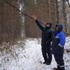 В Каменске-Уральском активно ведется санитарная вырубка деревьев в лесопарковых зонах