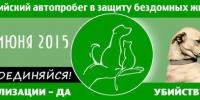 6 июня Каменск примет участие во всероссийской акции в защиту животных