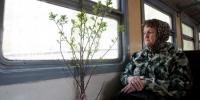 Пенсионеры-садоводы Каменска-Уральского смогут покупать льготные билеты на электрички