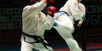 Спортсмен из Каменска-Уральского стал вторым на чемпионате мира по тхэквондо