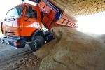 Под Каменском-Уральским задержали КАМАЗ с зерном сомнительного качества