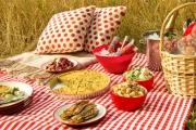 Главный лесничий области призвал каменцев готовить еду для пикников дома