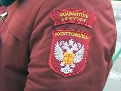В первом квартале этого года санитарные врачи Каменска-Уральского выписали штрафов почти на 2 млн. рублей