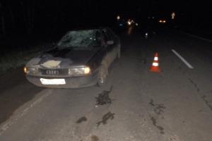 В Каменске-Уральском ищут свидетелей трех ДТП, в которых пострадали два пешехода и велосипедист