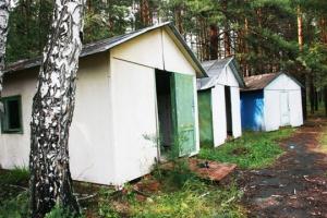 Синарский трубный завод продает земельный участок под Каменском-Уральским, на котором размещался пионерский лагерь «Дружба»