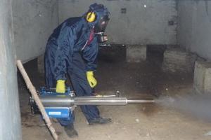 Более миллиона квадратных метров в подвалах домов Каменска-Уральского обработали от крыс