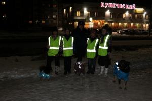 В Каменске-Уральском собаки помогли рекламировать светоотражающие наклейки