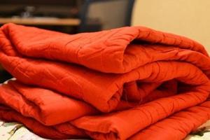 Два одеяла и чайный сервиз. Воры в коллективных садах Каменска-Уральского рады всему