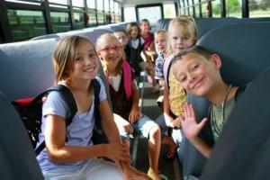 Из-за аварийного висячего моста, учеников из деревни Черноскутова, что под Каменском-Уральским, должны будут отвозить в школу на автобусе