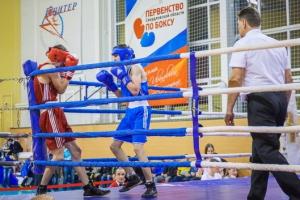 Одиннадцать медалей с первенства области по боксу привезли молодые спортсмены из Каменска-Уральского