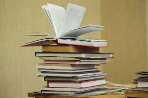 Библиотеки в учебных заведениях Каменска-Уральского проверят на наличие экстремистской литературы