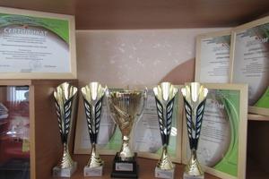 Танцевальный коллектив из Каменска-Уральского вышел в финал  закрытого грантового конкурса «Кубок победителей»