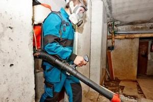 Коммунальщики Каменска-Уральского продолжили борьбу с грызунами и насекомыми в многоквартирных домах