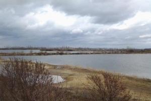 В Каменске-Уральском библиотекари призвали провести глобальный субботник на пляже карьера Силикатный