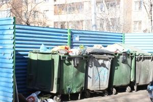 Информация о младенце, которого обнаружили в мусорном баке на улице Пугачева в Каменске-Уральском, не подтвердилась
