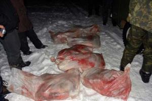 И снова «черные охотники». Под Каменском-Уральским задержали машину, в которой нашли мясо косули