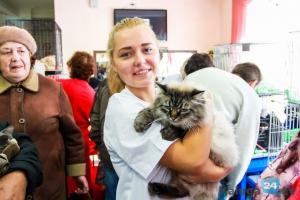 В Каменске-Уральском пройдет очередная выставка-раздача кошек