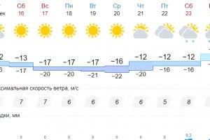 До конца декабря Каменск-Уральский ждет минимальное количество осадков. А новый год может начаться с оттепели