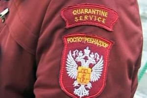 В Каменске-Уральском может появиться мошенница, которая представляется сотрудником Роспотребнадзора