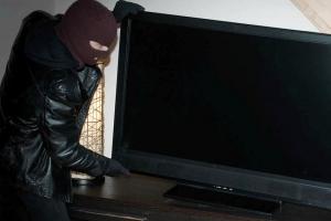 Житель Каменска-Уральского украл телевизор у своего брата