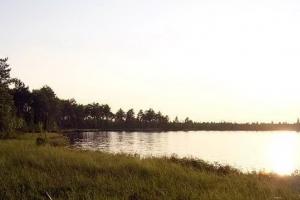 Санитарные врачи включили реку Каменку в число водоемов, где опасно купаться