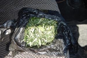 Сразу несколько человек с наркотиками задержали в Каменске-Уральском за последние дни