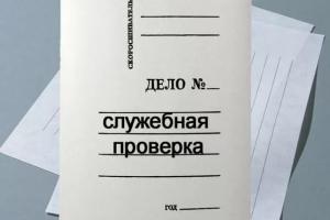По факту перевозки ребенка с нарушениями в автомобиле ребенка жительницей Каменска-Уральского, проведут служебную проверку