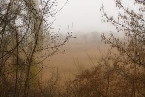В Каменске-Уральском сняли предупреждение о смоге