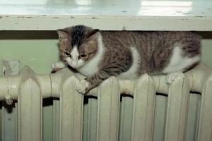 Отопление в дома жителей микрорайона Южный Каменска-Уральского поступит с небольшим опозданием