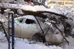 Из-за неблагоприятных погодных условий, в Каменске-Уральском возможны перебои с подачей электричества и падение деревьев