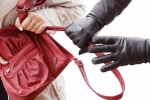 В Каменске-Уральском грабители объявили охоту на дамские сумочки