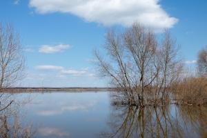 Начало половодья в Каменске-Уральском ожидается 1-6 апреля