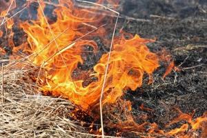 123 возгорания сухой травы за неделю зарегистрировано в Каменске-Уральском и районе