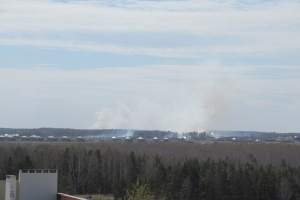 Сегодня произошло два серьезных возгорания травы, с которыми пришлось бороться пожарным Каменска-Уральского