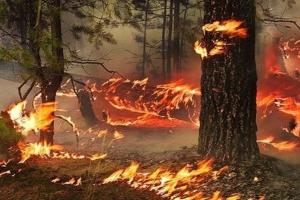 Вчерашний пожар в микрорайоне Южный Каменска-Уральского, оказывается, еще цветочки, по сравнению с тем, что творится в районе
