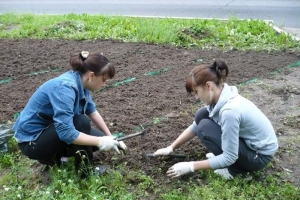 1 июня в Каменске-Уральском заканчивается срок подачи заявок от работодателей, которым предоставят субсидии для трудоустройства подростков