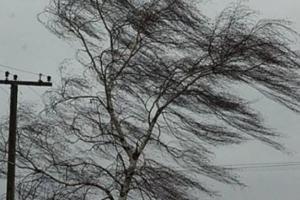 Обрушившаяся на Свердловскую область буря оставила без электричества часть жителей в Каменске-Уральском и районе