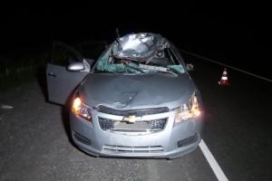 Во вторник вечером на трассе «Екатеринбург – Каменск-Уральский» погибла женщина, сбившая своей машиной лося