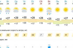 Жара продержится в Каменске-Уральском до начала августа. Но нам пообещали дожди