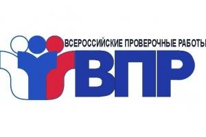 Три школы из Каменска-Уральского попали в список учебных заведений, где необъективно провели Всероссийские проверочные работы