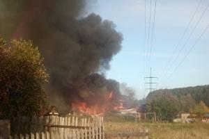Новые подробности про вчерашний пожар под Каменском-Уральском. Это был дом волонтера, который приютил два десятка собак