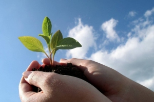 Каменск-Уральский занял 102 место в России по экологическому благополучию