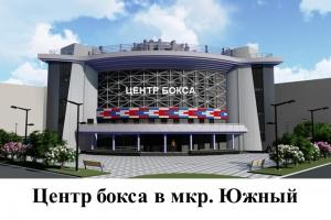 В микрорайоне Южный Каменска-Уральского планируют построить Центр бокса