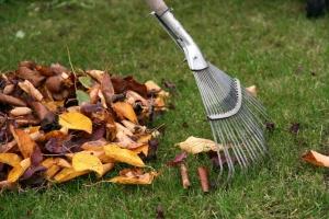 Две с половиной тысячи квадратных метров придомовой территории почистили этой осенью во дворах Каменска-Уральского