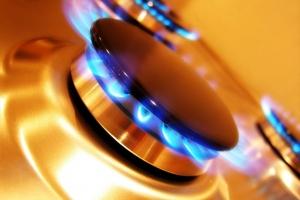 Для Каменска-Уральского определили цену на газ для рядовых жителей