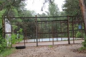 В Каменске-Уральском определяют судьбу заброшенного теннисного корта в городском парке. Ваше мнение?