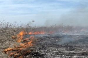 И даже в морозы. Под Каменском-Уральским вчера зарегистрировано несколько случаев возгорания травы